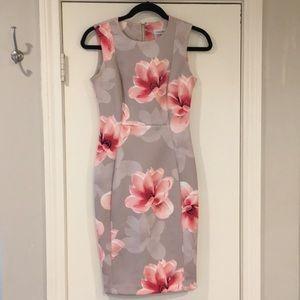 Calvin Klein Grey Floral scuba Sheath Dress - 2P